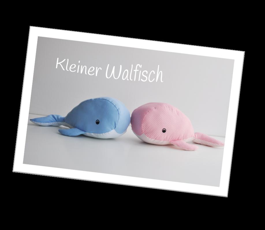 kleiner-Walfisch_1