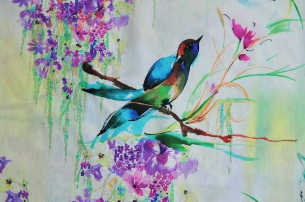 Bio-Popeline - Kolibri
