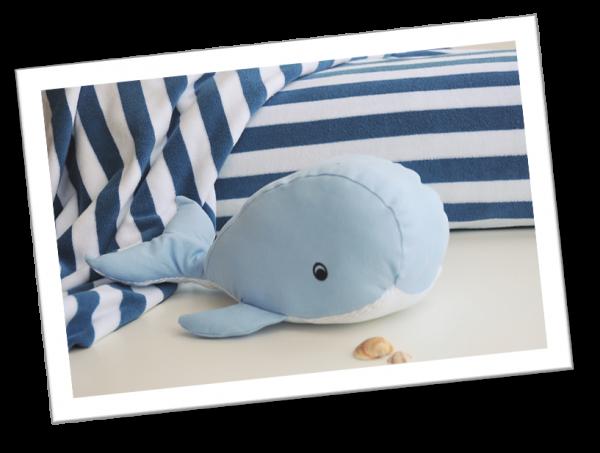 kleiner-Walfisch_2