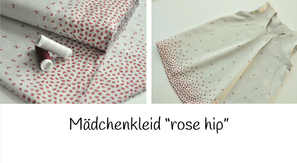 Kleid-Rose-HIP